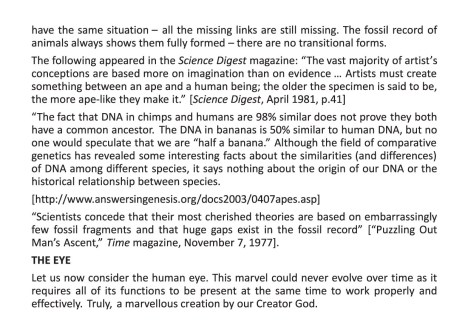 29154 Creation vs. Evolution Tract (20pager)