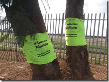 #SaveKidsLives on trees - They need the Gospel of Jesus Christ