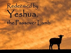 Redeemed by Yeshua, the Passover Lamb