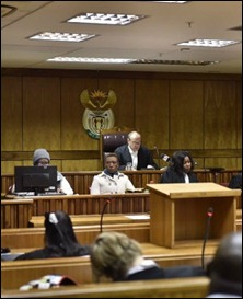 Judge Willem van der Linde hands down the ruling at the High Court in Johannesburg. (Wikus De Wet-Netwerk24)