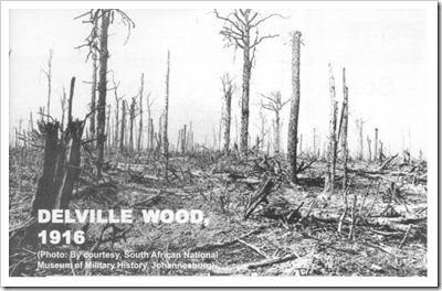 Delville-wood, 1916